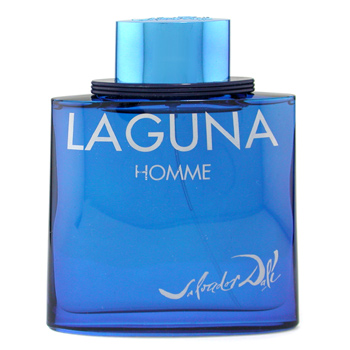 buy Salvador Dali Laguna Homme Eau De Toilette Spray 100ml/3.3oz  skin care shop